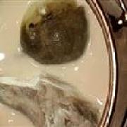 华鲀河豚鱼料理