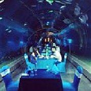 天房洲际度假酒店-海底餐厅 涛餐厅