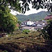 雲林居茶荘