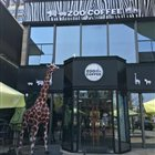 ZOO COFFEE 中铁店